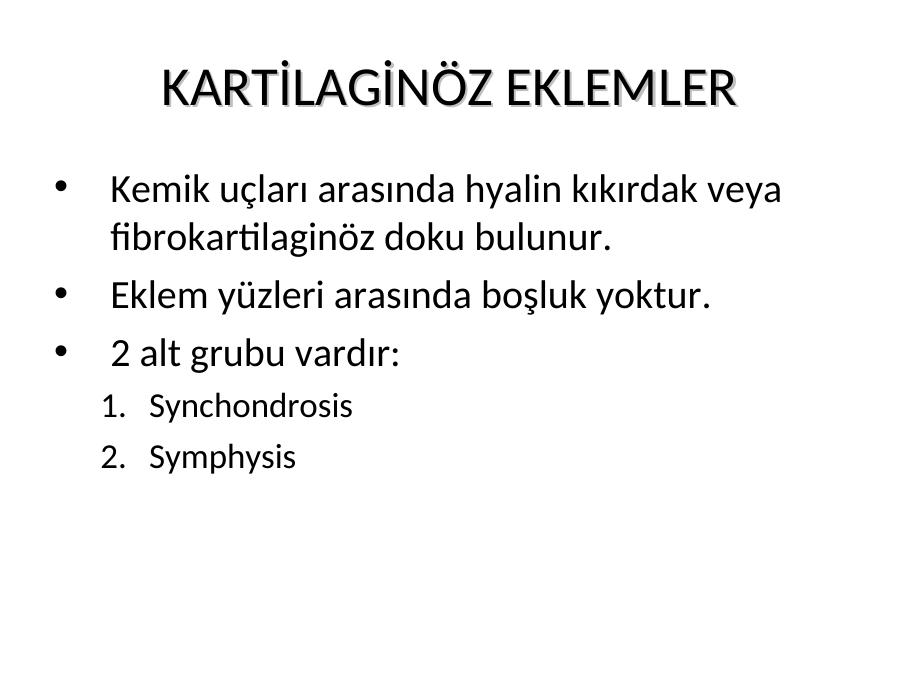 Anatomi Nedi R Akademik Sunum Looking for online definition of synchondrosis xiphosternalis in the medical dictionary? anatomi nedi r akademik sunum