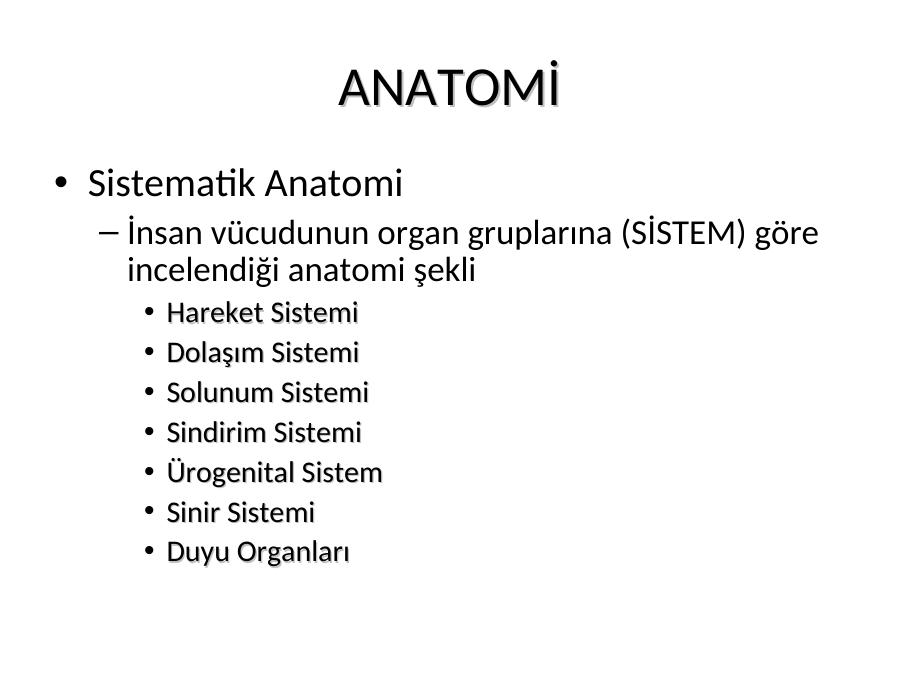 Anatomi Nedi R Akademik Sunum Synchondrosis xiphisternalis, symphysis xiphosternalis the xiphisternal joint arises as a synchondrosis between the inferior sternebrae of the sternal body and. anatomi nedi r akademik sunum