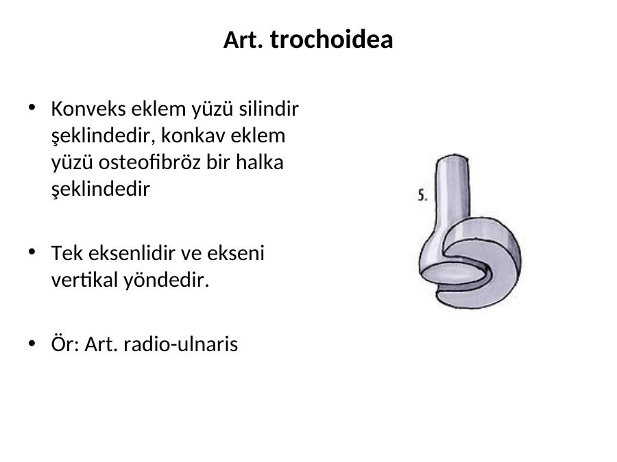 Anatomi Nedi R Akademik Sunum Xiphisternal eklem (veya xiphisternal synchondrosis ) alt kısmına yakın bir yerde olduğu sternum , burada sternum gövdesi ve kılıç şeklinde işlem buluşur. anatomi nedi r akademik sunum